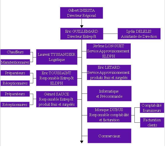 Stage Structure et Organisation